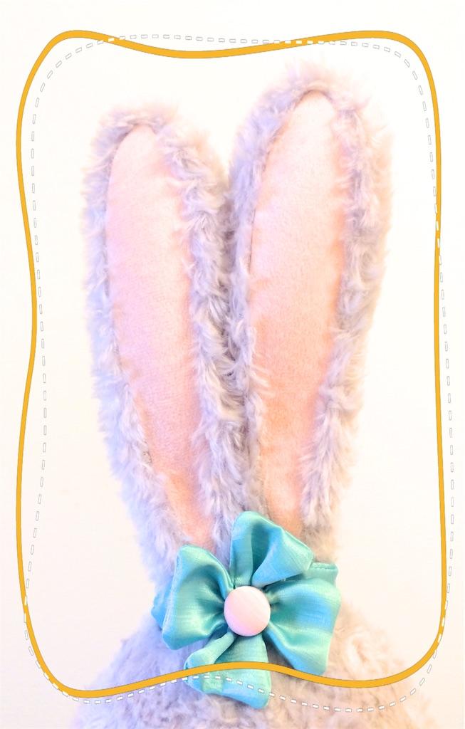 うさぎの耳の写真