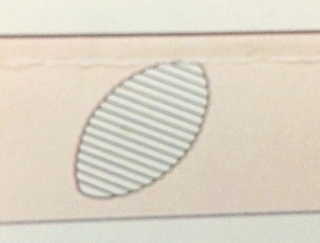 刺繍サテンステッチ刺し方